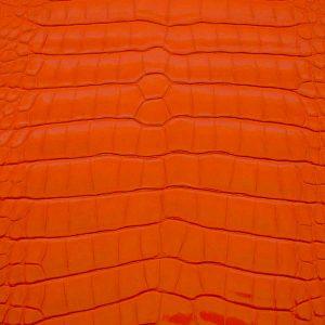 Alligatore-Millennium-Super-Lux-Arancio-900x900