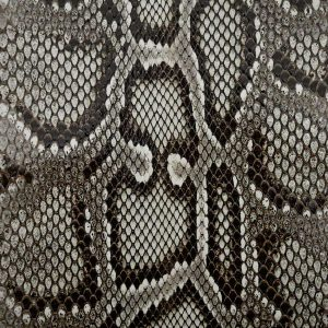 Pitone-Roccia-Millennium-900x900